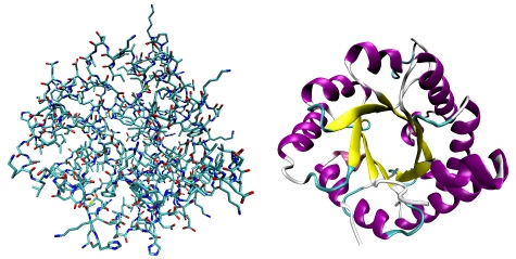 Protein as atoms and abstracted